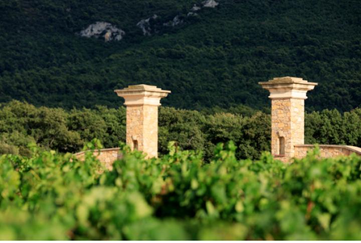 Le Château de Roquefeuille , événements Corporate en Provence
