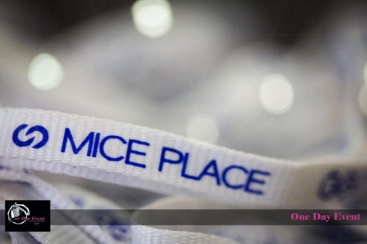 MICE PLACE